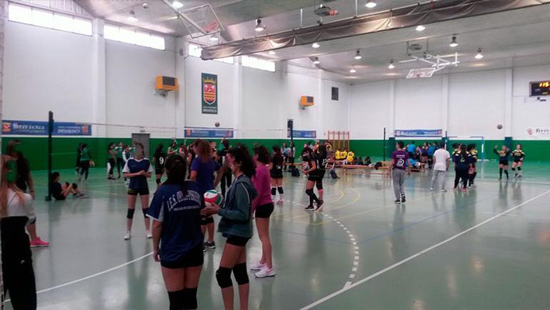 XV Campus de Voleibol Diputación de Burgos